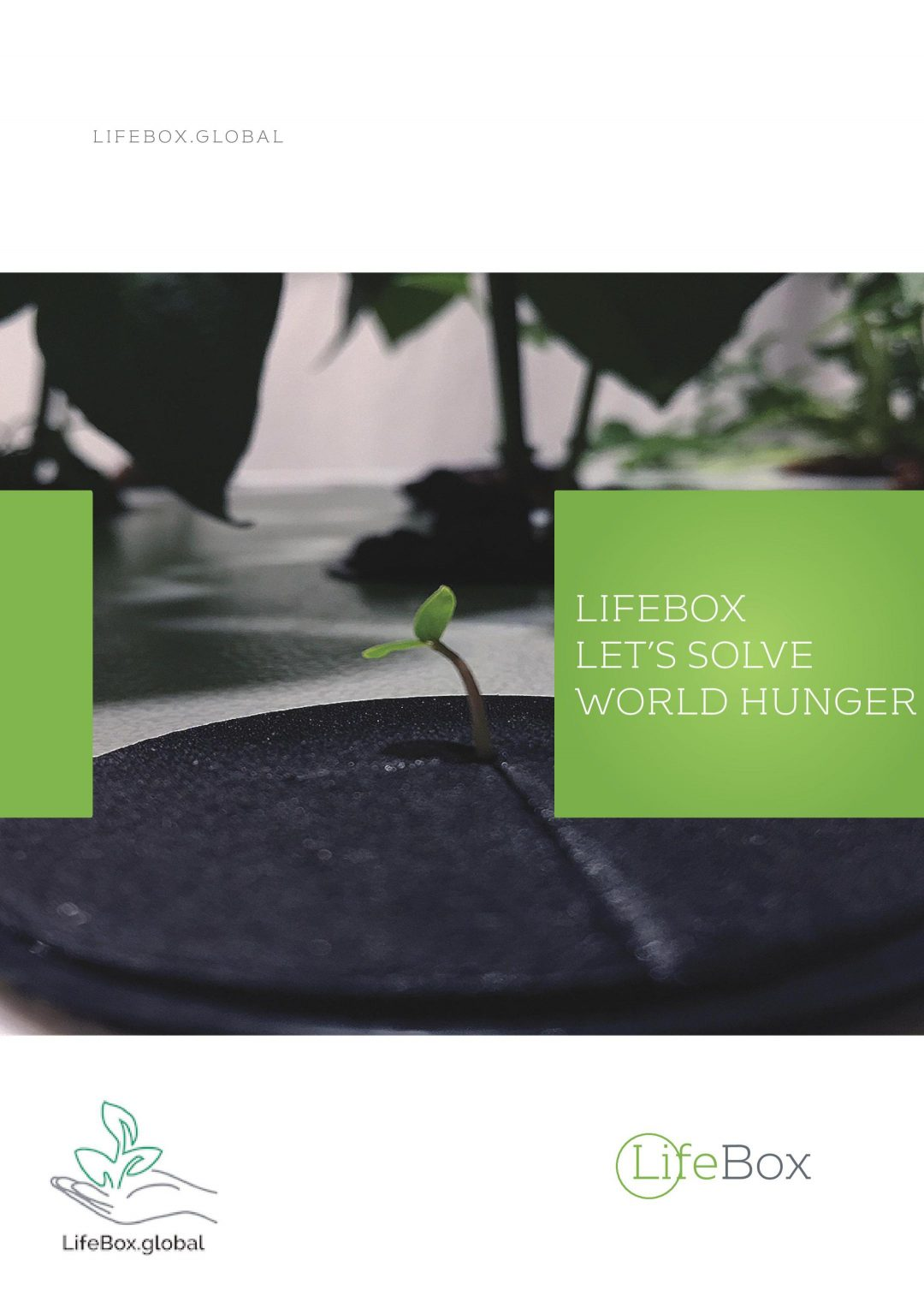 LifeBox-Glossy-Marketing-Material-page-001